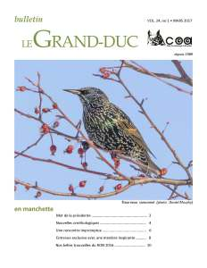 Gr-ducV24-no1_2017-03_Page_01